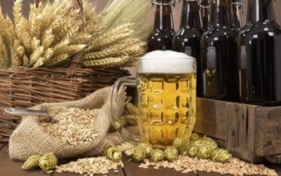 Getreidemenü GH Zum Hirschen