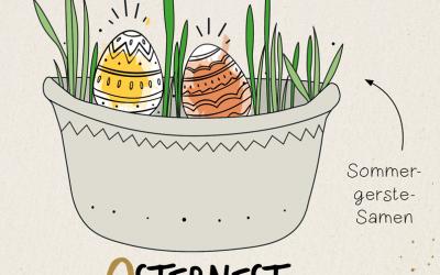 Sommergerste-Osternest für unsere Grundschüler