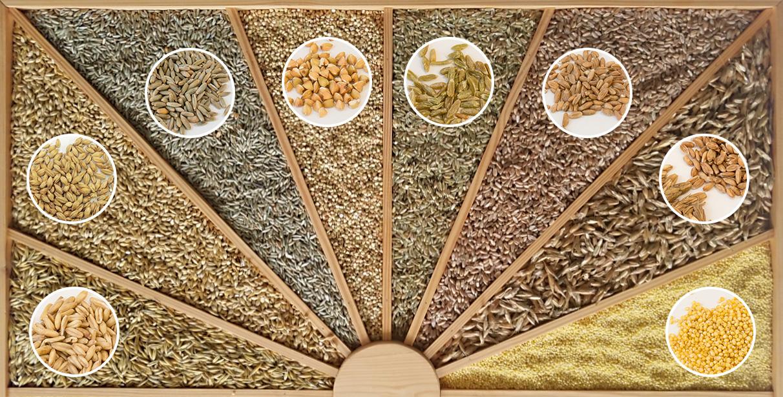 Getreiderätsel